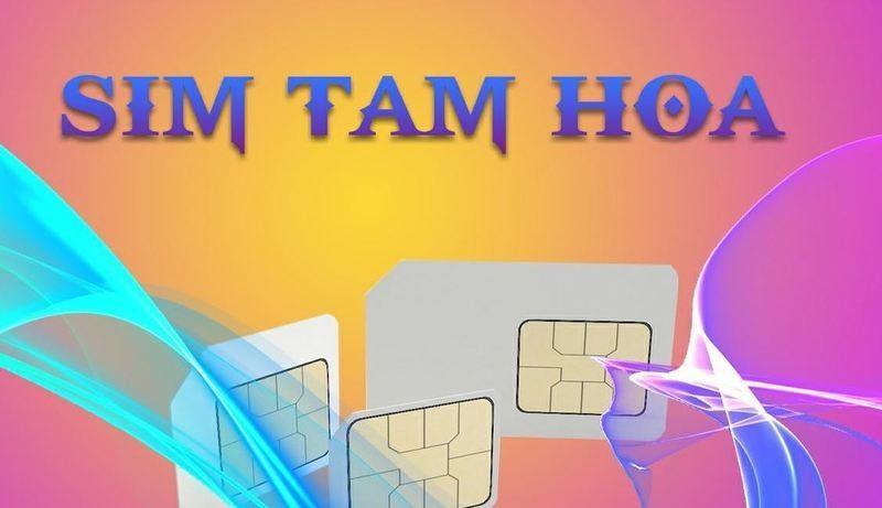 Sim Tam Hoa đem lại may mắn cho chủ sở hữu